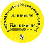 PJVM - I Think You Are